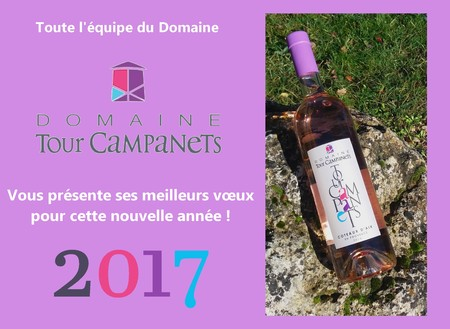 MEILLEURS VOEUX 2017 - HAPPY NEW YEAR 2017